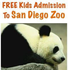 FREE Kids Admission to San Diego Zoo! {10/1 - 10/31}