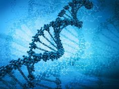 """""""There are as many atoms in one molecule of DNA as there are stars in a typical galaxy."""" ― Carl Sagan DNA has 23 pairs of chromosomes, comprising about 6 billion neucleotides. The neucleotides are made up of guanine, adenine, cytosine and thymine. Each neucleotide has approximately 34 atoms. Therefore, human DNA contains an estimated total of 204 billion atoms."""