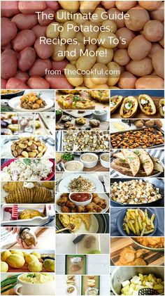 The Ultimate Potato Guide -  Everything you ever wanted to know about Potatoes, recipes, how-to's, and more!  #potatoguide #cookingtips #potatorecipes