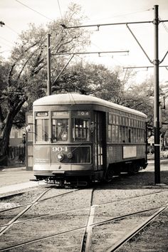 New Orleans Photography  New Orleans Street Car by rebeccaplotnick, $30.00