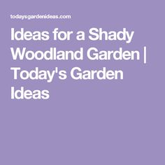 Ideas for a Shady Woodland Garden | Today's Garden Ideas