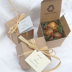 Iris bulbs great for a fall wedding favor. :)
