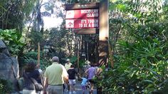 Signs guide guests out of the Oasis and onto Discovery Island, home to beautiful nature trails and the It's Tough to Be a Bug!, an attraction beneath the roots of the Tree of Life.