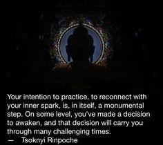 Tsoknyi Rinpoche quote Buddhist Wisdom, Buddhist Temple, Buddhists, Healing Words, Tibet, Temples, Trauma, Awakening, Buddha