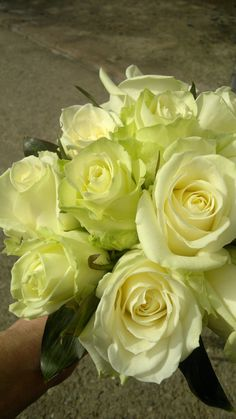 Small posy of white roses