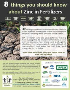 "Number 3 of the ""8 things you should know about zinc in fertilizers"""