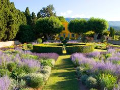 Love this take on a mixed wildflower/perennial meadow with a touch of formality.  French Garden