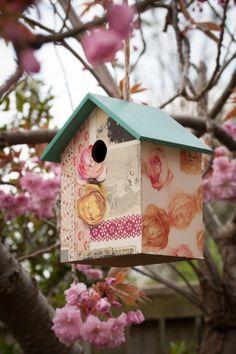 A stylish customised bird box