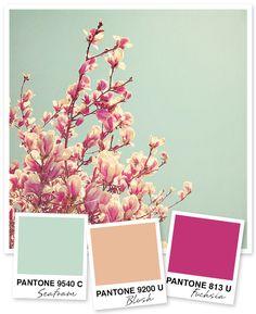 Mint, perzik en fuchsia kleurenpalet