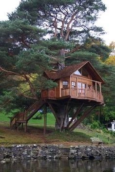 Awesome Tree House Ideas for Your Backyard_1