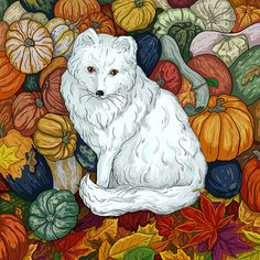 Arctic Fox. October.
