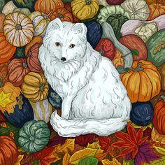 Arctic Fox. October.