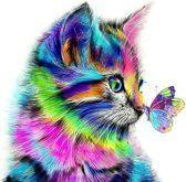 Diamond painting gekleurde kat met vlinder