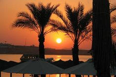 """""""Sharming Sunrise in Sharm el Sheikh"""" photo by Siobhan Pink Instagram, Sharm El Sheikh, Joy Of Living, Visit Egypt, Places Ive Been, Sunrise, Places To Visit, Wanderlust, In This Moment"""