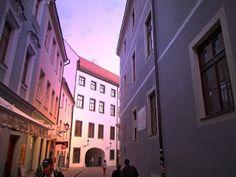 Mice Book Events: Bratislava
