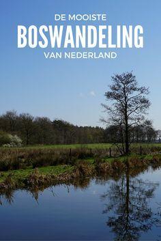 """Uit de wandelgids """"De mooiste boswandelingen van Nederland"""" wandelde ik de route bij Stramproy"""