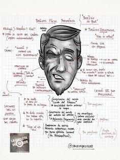 Parálisis facial periférica #neurología #otorrinolaringología http://chuletadeosler.blogspot.com.es/2015/04/neurologia-otorrinolaringologia.html… @IlindelatorreMD @DrMacarron