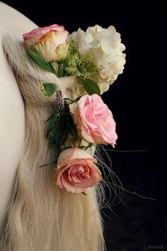 wedding tail | J. MacNeill Photography