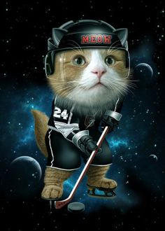 TEAM MEOW HOCKEY detailed, premium quality, magnet mounted prints on metal designed by talented artists. Our posters will make your wall come to life. Hockey Posters, Cat Posters, Funny Phone Wallpaper, Canvas Prints, Art Prints, Print Artist, Cat Art, Cool Artwork, Illustration Art