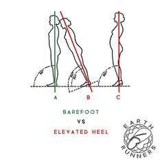 Minimal Vibram sole, Earth-Grip footbed & grounded conductive lacing system™offering the ultimate adventure sandal experience. Free your feet–Rewild your sole. Barefoot Shoes, Low Back Pain, Plantar Fasciitis, Knee Pain, Natural Healing, Improve Yourself, Zero, Footwear, Earth
