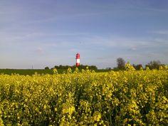#Urlaub an der #Ostsee,kurz vor #Dänemark wo sie noch naturbelassen ist