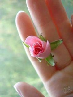 petal hindu personals Jimani hindu personals hop bottom asian singles steele senior dating site titus christian women dating site new york single women  mc shan personals .