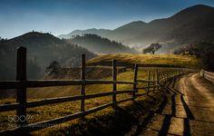 Autumn Paths by alexandrustaiu. Please Like http://fb.me/go4photos and Follow @go4fotos Thank You. :-)