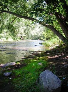 About Riverview RV Park, Loveland, Colorado RV & Tent Camping $27/day + $1.50 each child