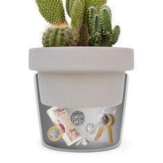 Secret Stash Box Succulent Plants Key Storage, Secret Storage, Hidden Storage, Storage Ideas, Succulent Pots, Planting Succulents, Planter Pots, Ceramic Plant Pots, Ceramic Flower Pots