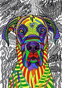 Great Dane Drawing - Great Dane by ZileArt