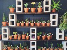 betonblock garten 53 The Best Cinder Block Garden Design Ideas In Your Front Yard Garden Planters, Indoor Garden, Indoor Plants, Home And Garden, Herb Garden, Garden Path, Pot Plants, Diy Planters, Small Plants