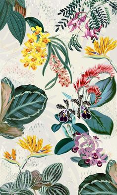 Patterns designed for fashion projects by Irina Muñoz Clares.Find more at iiii… Patterns designed for fashion projects by Irina Muñoz Clares. Botanical Illustration, Botanical Prints, Graphic Illustration, Floral Prints, Art Prints, Tropical Prints, Lino Prints, Vector Illustrations, Block Prints
