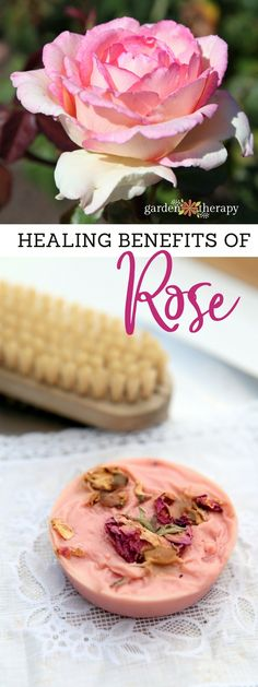 Healing benefits of rose for skincare