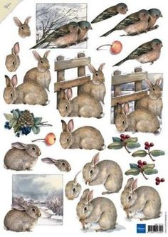 Rabbits – Mattie the Brown – Marianne Design Decoupage sheets – Hobbynu. Christmas Time, Christmas Cards, Image 3d, 3d Sheets, Woodland Christmas, 3d Cards, Marianne Design, Card Patterns, Animal Cards