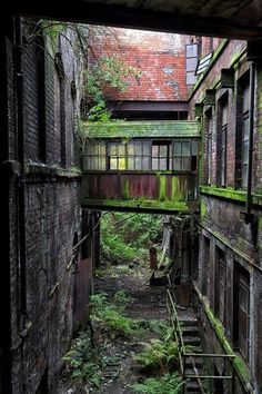 Here I am gathering further inspiration from nature retaking an industrial…