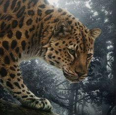 Hudozhnitsa-Cristina-Penescu.-Akril-Amur-Leopard.-12x12-dyuymov