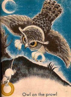 Vintage Children's Book, Ape in a Cape by Fritz Eichenberg | Flickr - Photo Sharing!