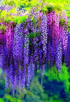 http://mynameislove1977.tumblr.com/post/128429034927