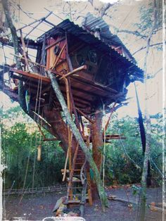 Hippy tree house!