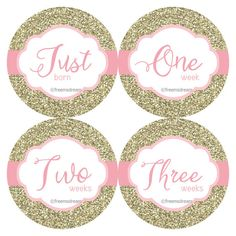 These classy milestone/monthly bodysuit stickers in a pink & gold glitter design range from Just Born to 1 - 3 Weeks to 1-12 months for 16 stickers