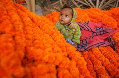 Allahabad, India. AP Photo/Rajesh Kumar Singh