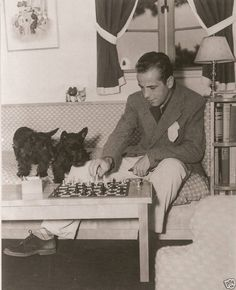 Humphrey Bogart and his Scottie playing chess together.