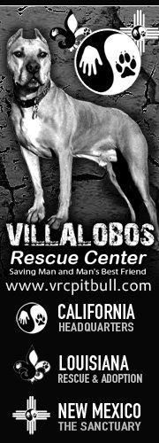Villalobos Rescue Center~ New Orleans and New Mexico... Such an amazing cause for a bunch of misunderstood dogs!!!