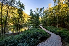 ww1-landscape-memorial-forest-path-Ypres-Belgium-omgeving-landscape-architecture-02 « Landscape Architecture Works | Landezine