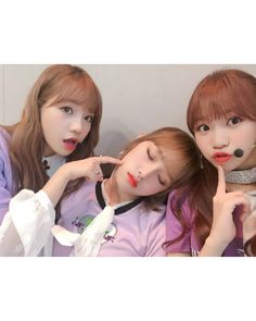 3 look a likes in 1 photo😂 Kpop Girl Groups, Korean Girl Groups, Kpop Girls, Fandom, Yuri, Secret Song, Survival, Korean Girl Fashion, Baby Ducks