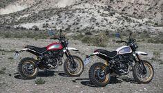 Ducati Desert Sled!