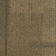 Biscuit's Carpet Tiles - CCA