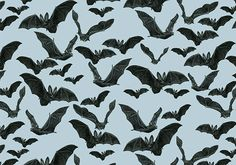 Patterns. Black Animals by Silvia Masdeu #illustration #bat #pattern