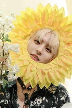 Btob Lee Minhyuk, Sungjae Btob, Im Hyunsik, Lee Changsub, Perfect Abs, Lee Jung, Sanha, Golden Child, Flower Boys
