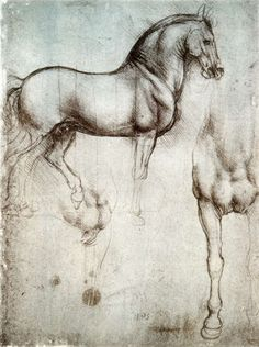 sketch of draft horse by Leonardo Da Vinci